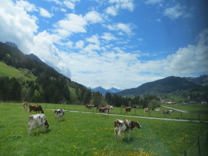 Murren to Geneva (9)