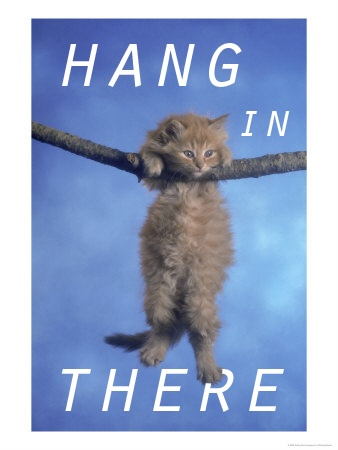 hanginthere